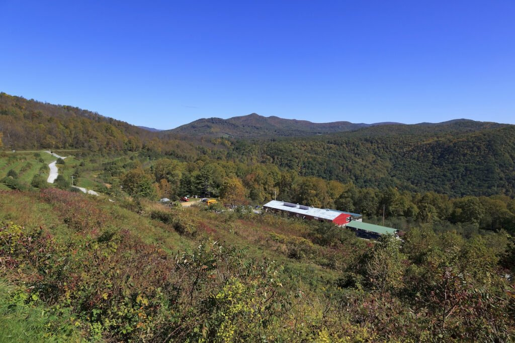 View of the Orchard at Altapass on the Blue Ridge Parkway