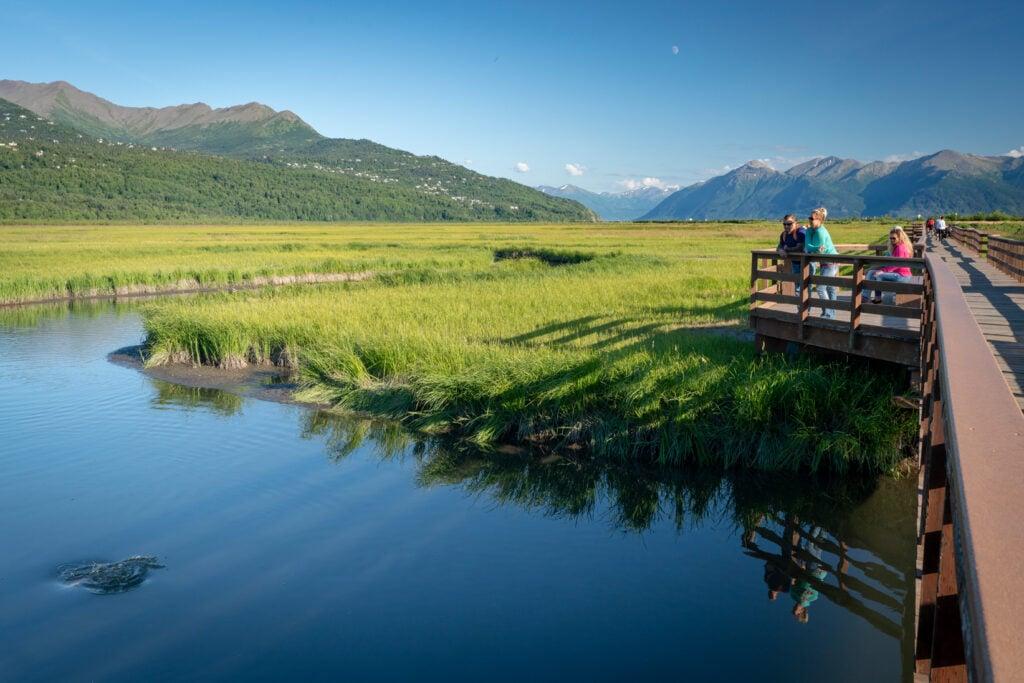 Potter Marsh in Alaska
