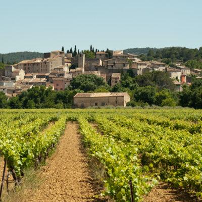 Carces, Provence, France vineyard