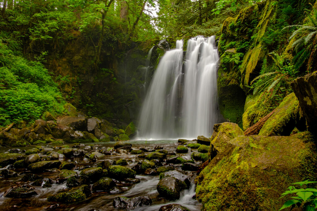 Lush vegetation and a rushing waterfall positioned to the right, slightly off-center.