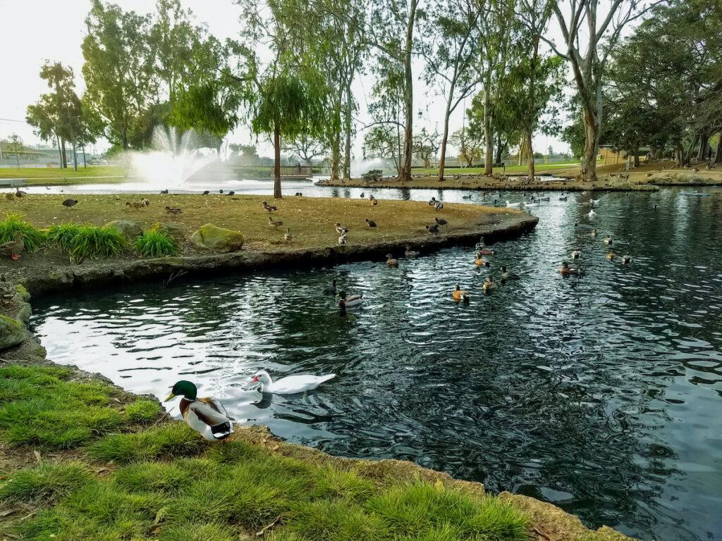TeWinkle Park, Costa Mesa, California