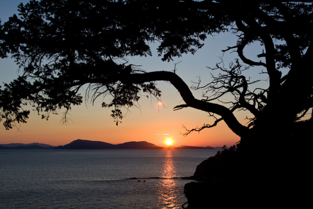 Sunset framed by a silhouetted arbutus tree on Sucia Island, one of the San Juan Islands, Washington.