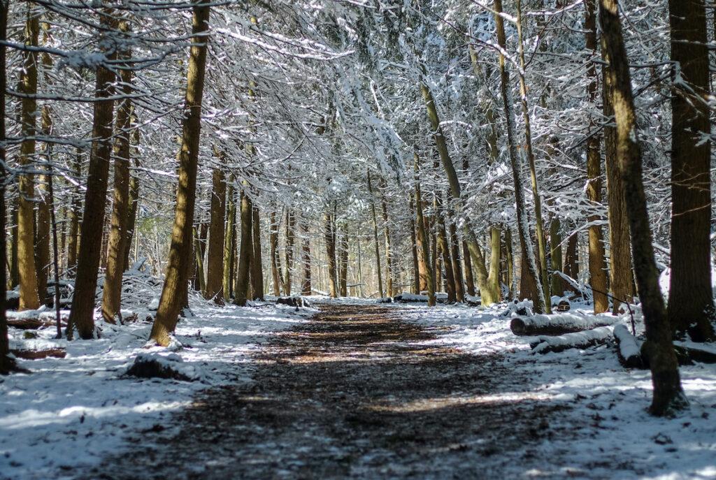 Virginia Kendall Ledges And Loop Trail