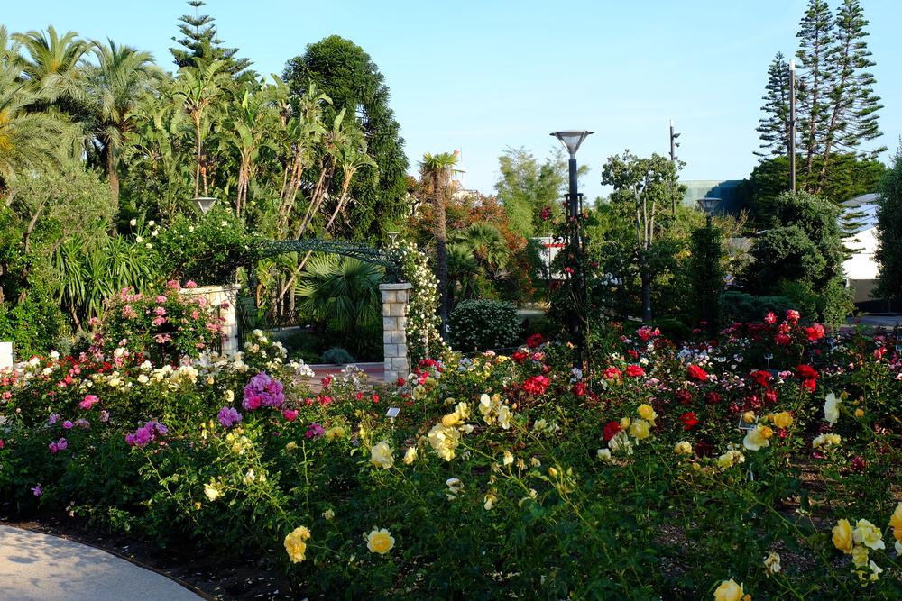 Princess Grace Rose Garden, Monaco.