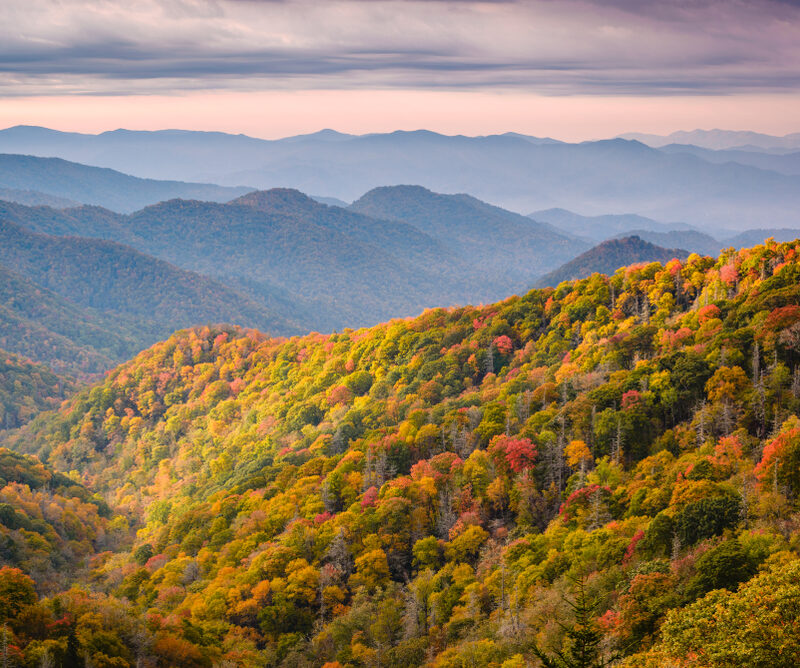 Great Smoky Mountains in the fall.