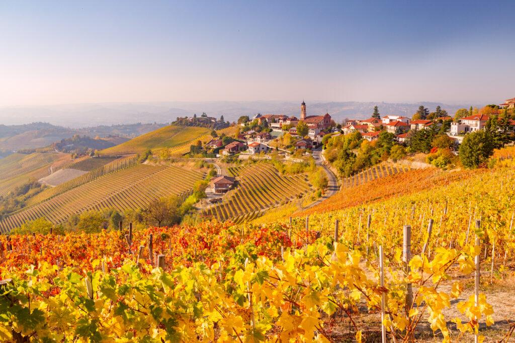 Treiso in Autumn, Langhe, Piedmont, Italy.