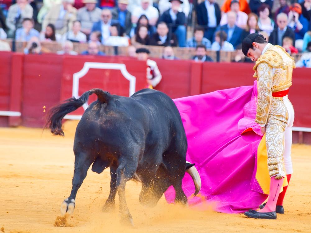 Novilladas in Plaza de Toros de Sevilla. Novillero: Emilio Huertas. May 20, 2012 in Sevilla, Spain