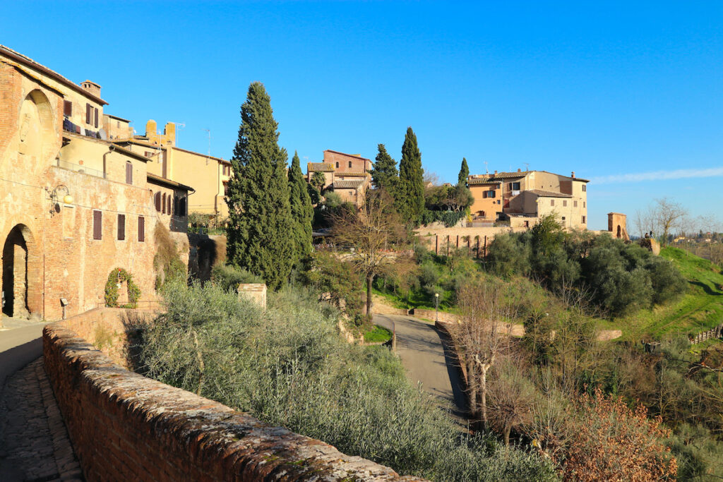 Panoramic view to cosy tuscany town Certaldo with cypress and bright blue sky, Italy.