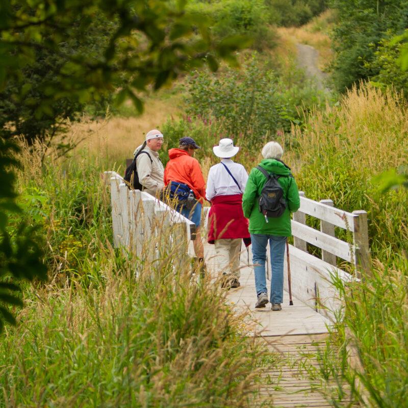 A group of hikers on a stream crossing bridge on a Oregon Coast hiking trail near Seaside.
