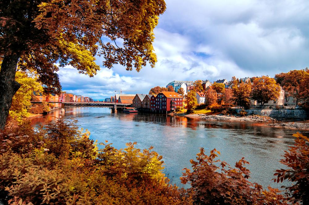 View through autumn foliage to Nidelva river, Trondheim city, Norway