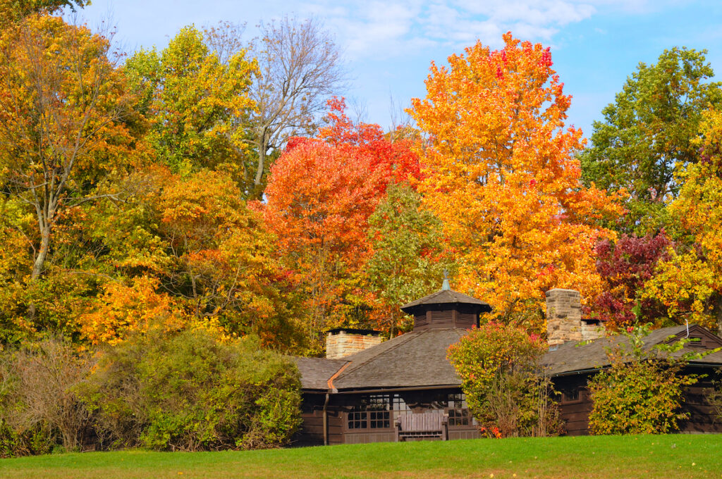 Rustic park shelter in Cuyahoga Valley National Park with brilliant autumn foliage.