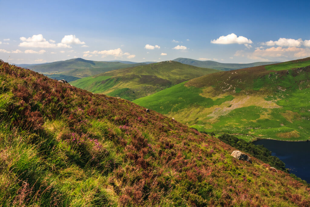Landscape of the Wicklow Mountains in summer, Sally Gap, Ireland.