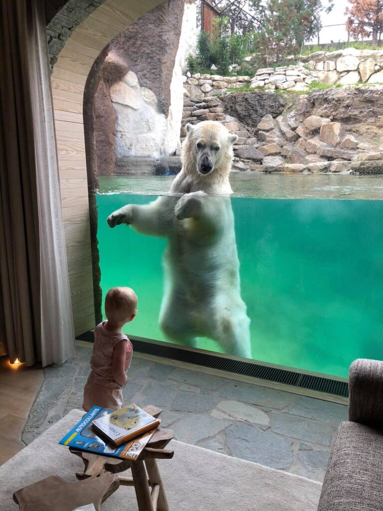 White Bear House , Pairi Daiza Resort, Brugelette, Belgium.