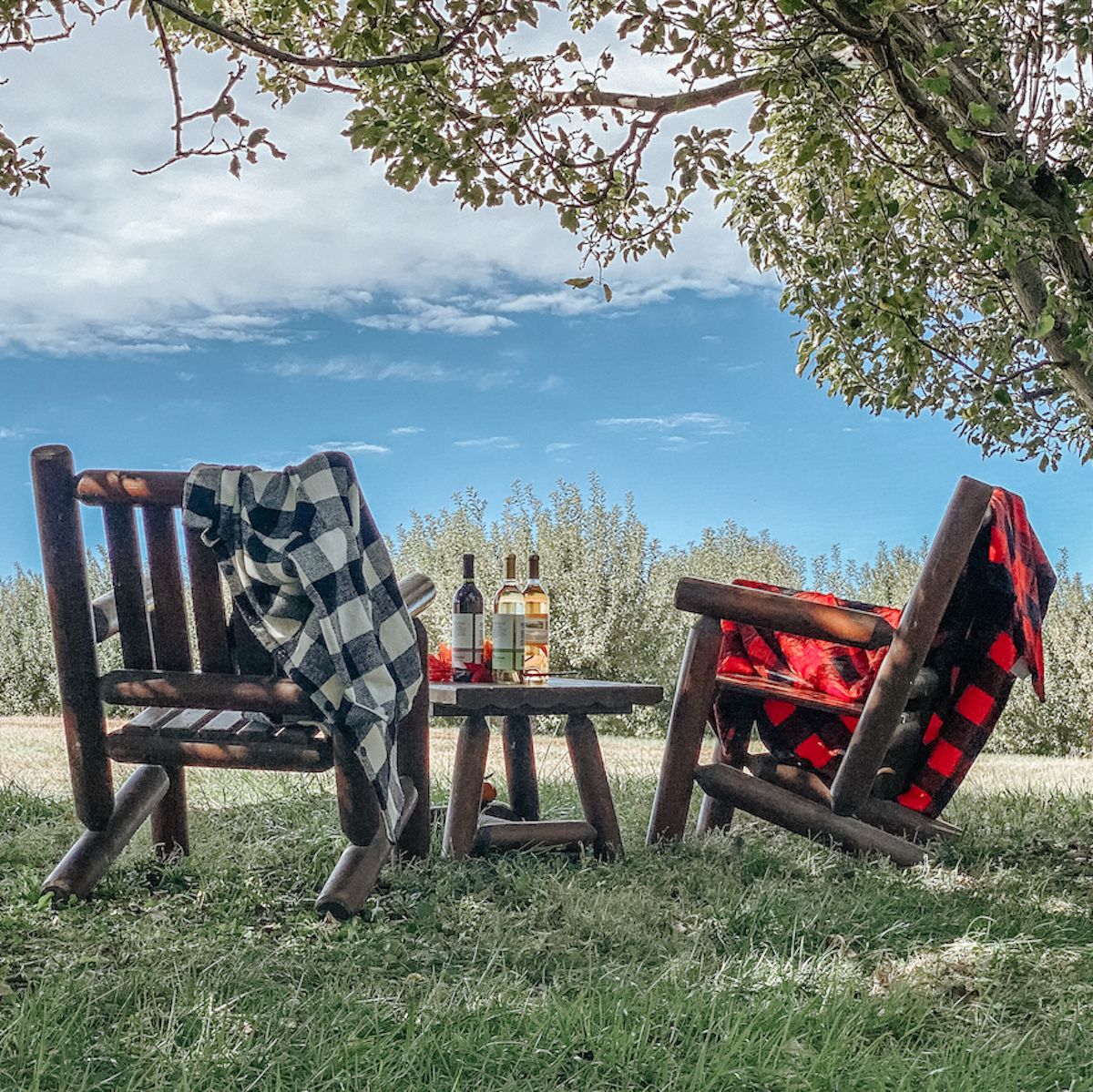 Two rocking chairs sit outside at the Apple Jack Festival