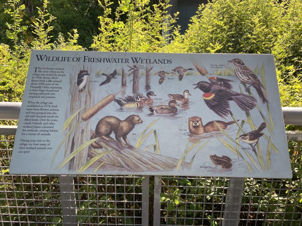 Placard at the Billy Frank Wildlife Refuge