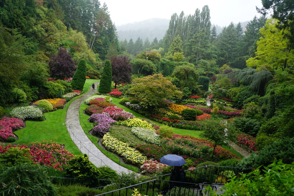 Ariel view of a pathway with blooming flowers at Butchart Gardens on a rainy day.