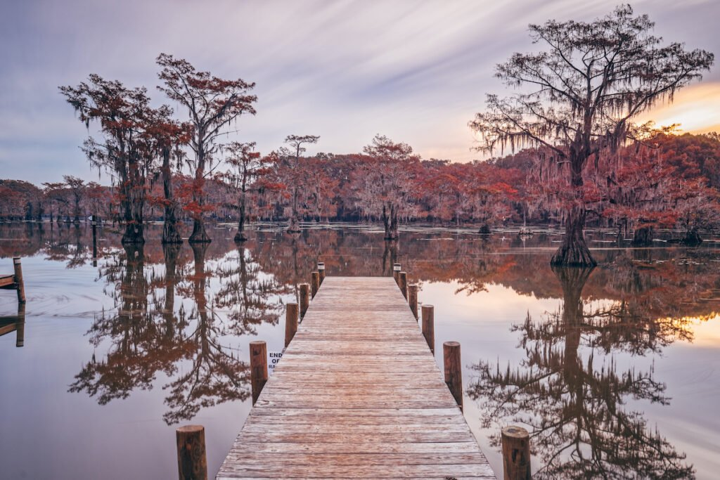 Caddo Lake State Park; Karnack, Texas