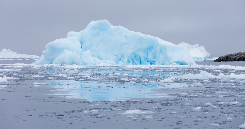Turquoise and baby blue iceberg floating in Cierva Cove, Antarctica.