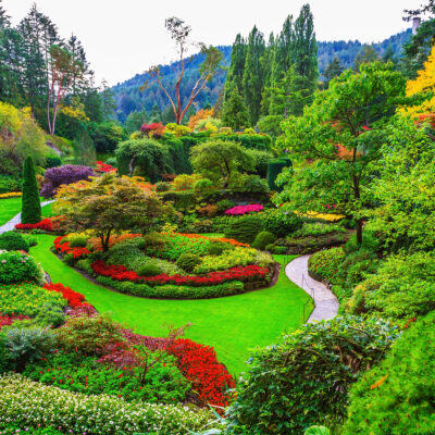 Butchart Gardens, gardens on Vancouver Island. Flower beds of colorful flowers and walking paths for tourists