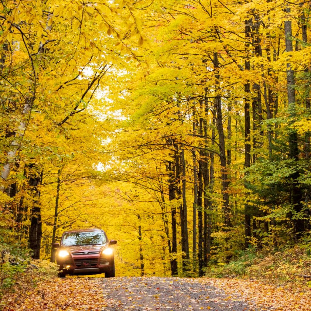 Autumn in Houghton Michigan - The Covered Drive
