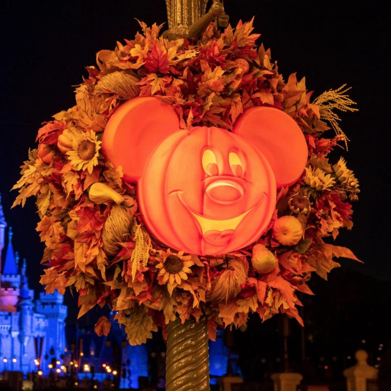 Fall decorations at Disney park