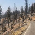 Lassen Volcanic National Park Highway (Image Credit: NPS)