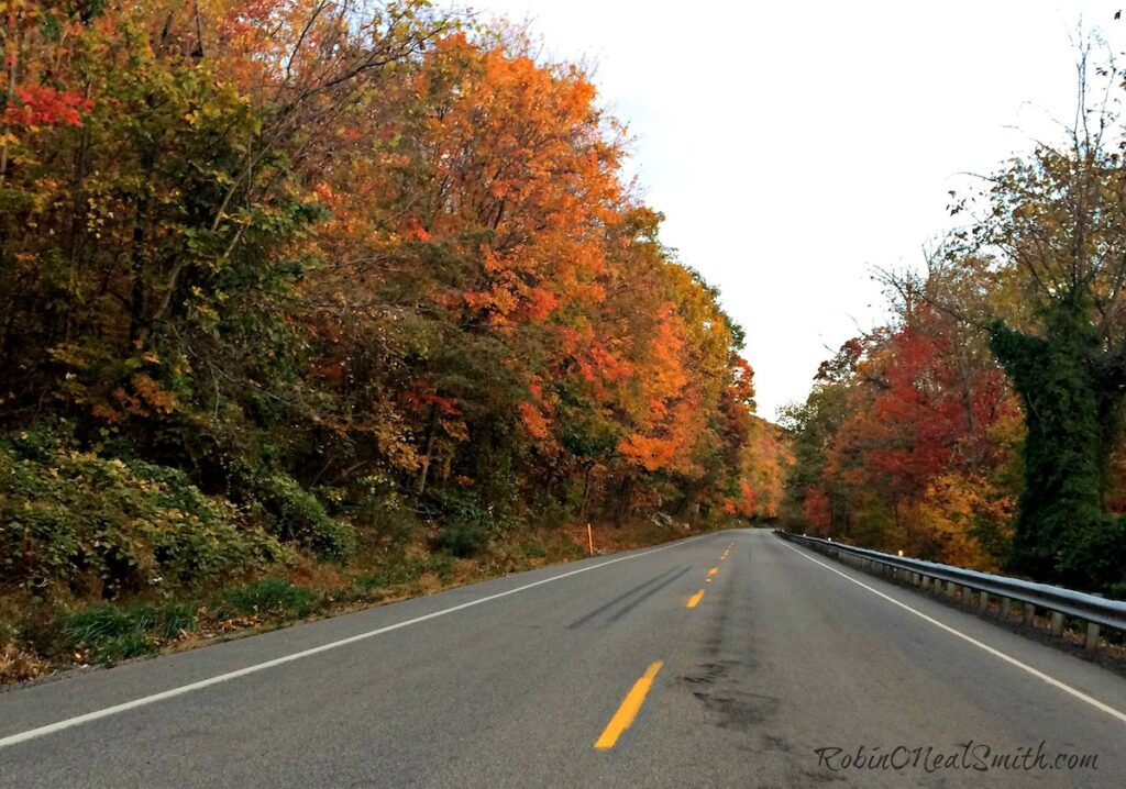 Two lane highway with fall foliage.