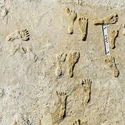 Some of the fossilized footprints at White Sands National Park.