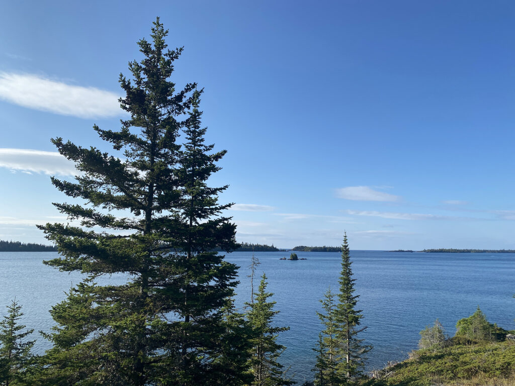 Landscape of pines and water at Isle Royale.