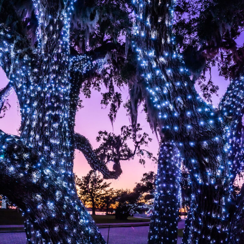 Jekyll Island lights up during the holidays.