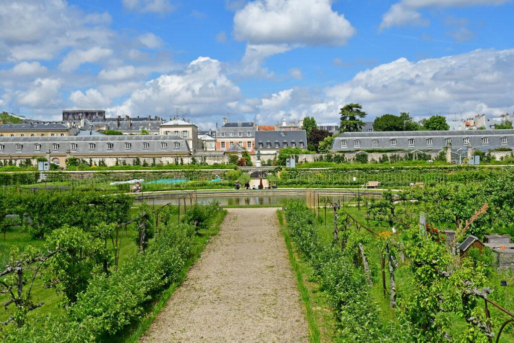 The King's Vegetable Garden; Versailles, France