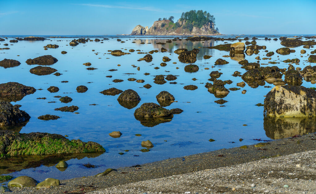 Lake Ozette at Olympic National Park