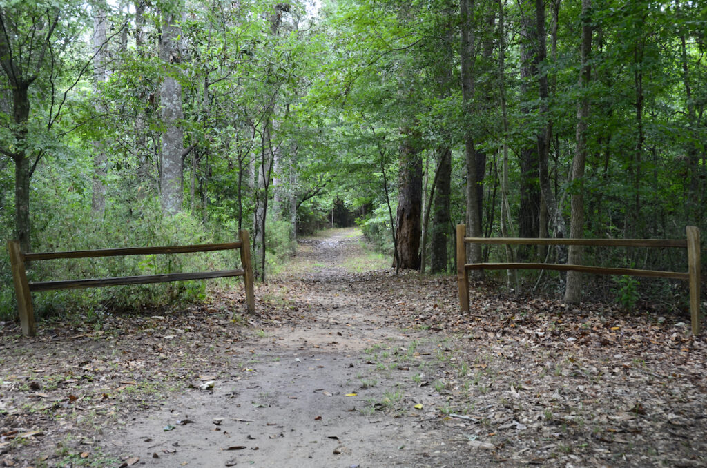 Martin Dies Jr. State Park; Jasper, Texas