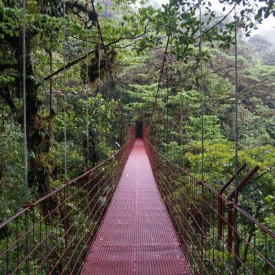 Bridge in Monteverde, Costa Rica