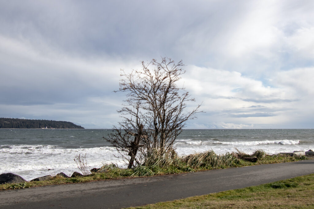 Rotary Sea Walk in Campbell River, British Columbia