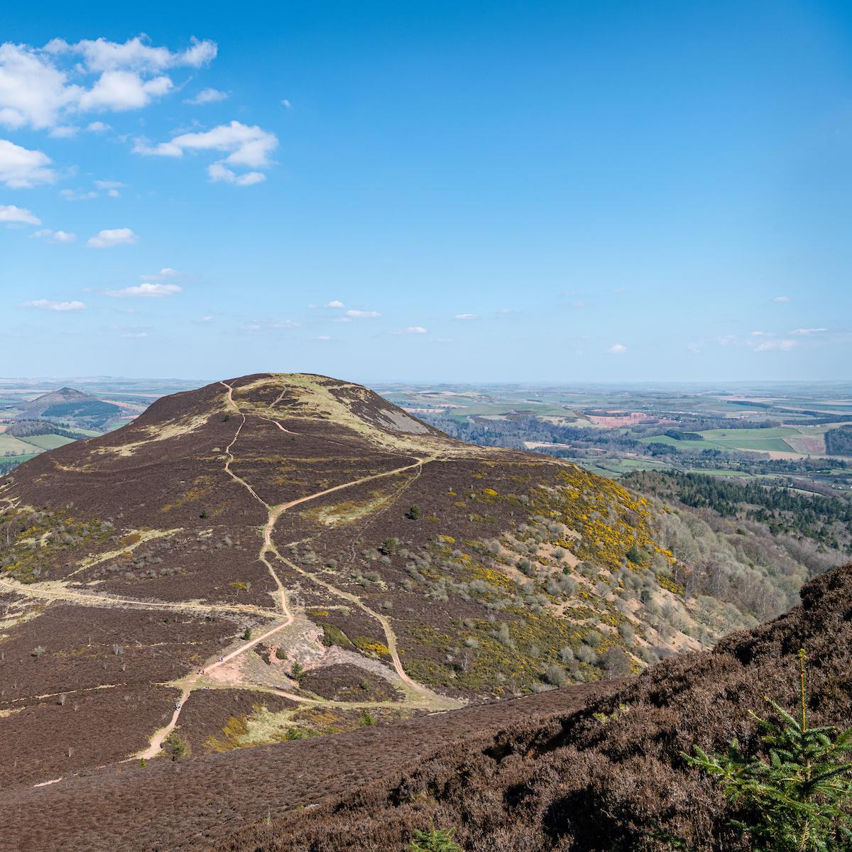 Scottish hillside