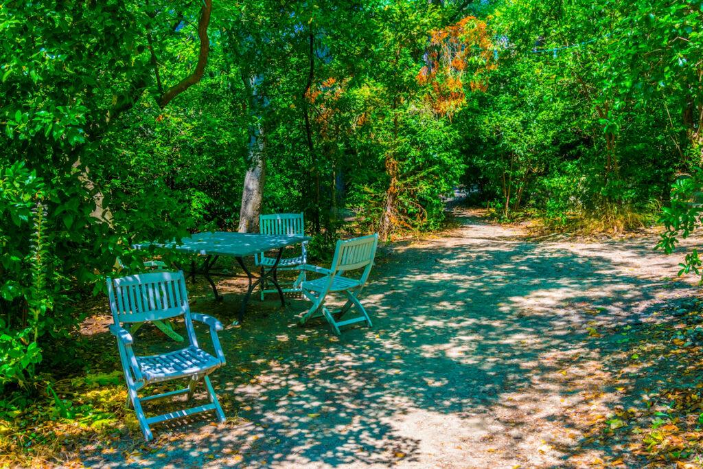 Cezanne's studio garden; Aix-en-Provence, France