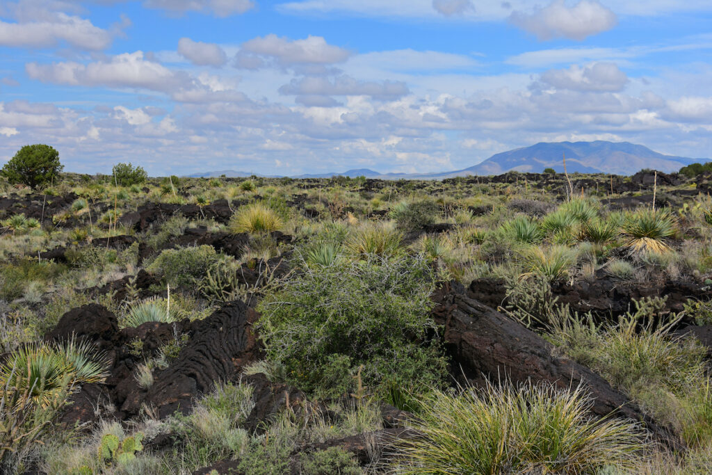 Valley of Fires National Recreation Area