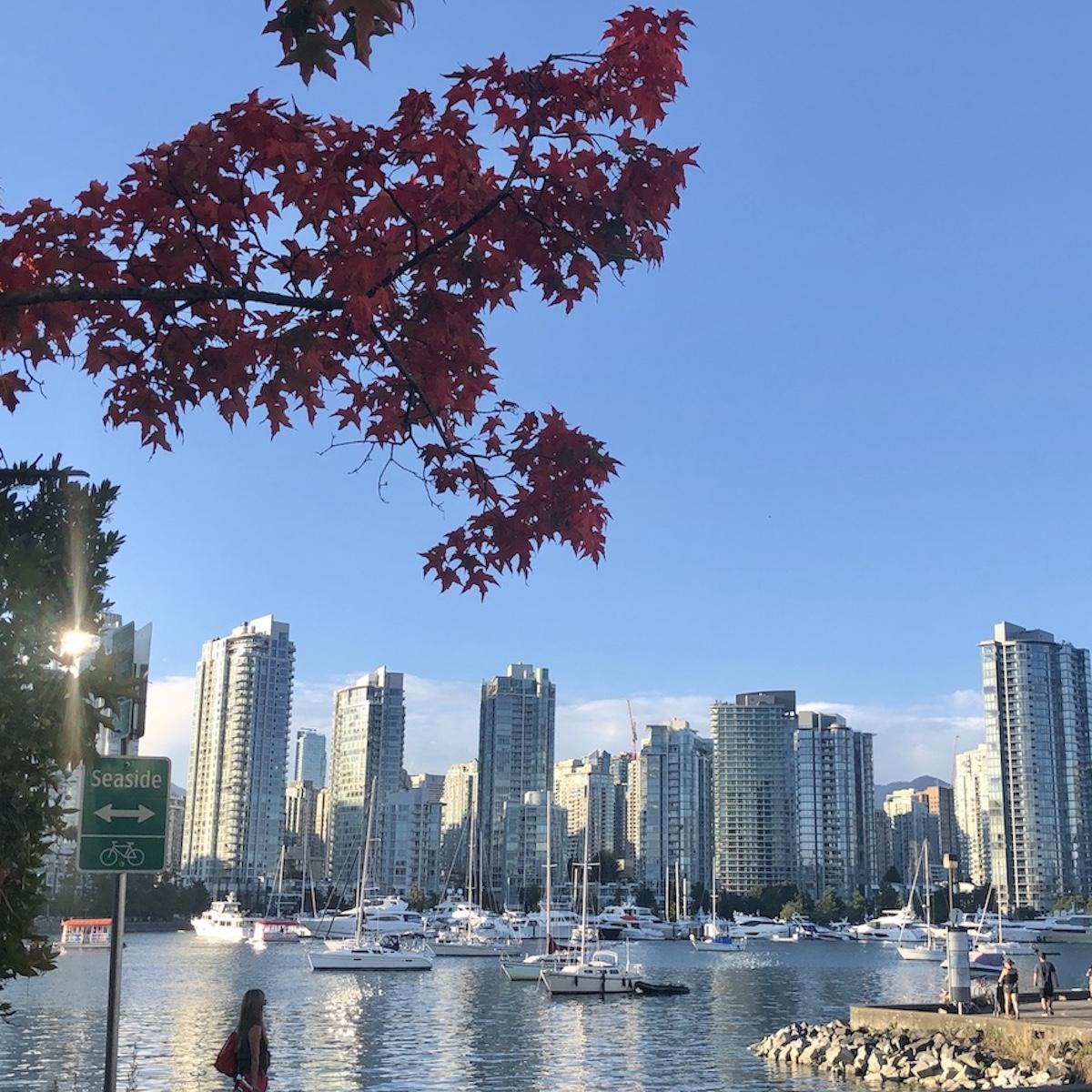 Vancouver skyline - Seaside paths