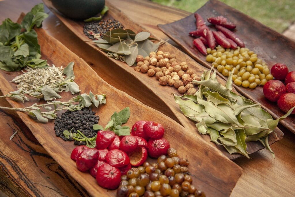 Colorful authentic aboriginal bush ingredients.