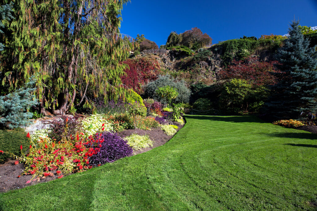 Blossoming colorful flowerbeds in summer city park at Stanley Park Vancouver.