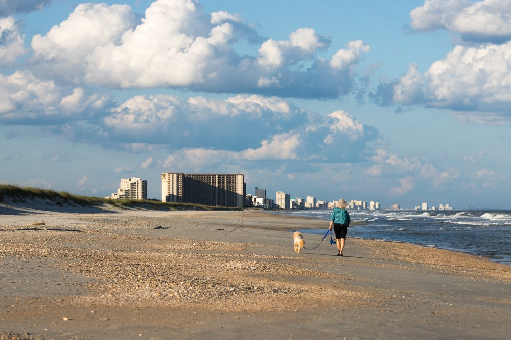 Older woman walking a golden doodle on the beach in Myrtle Beach South Carolina.