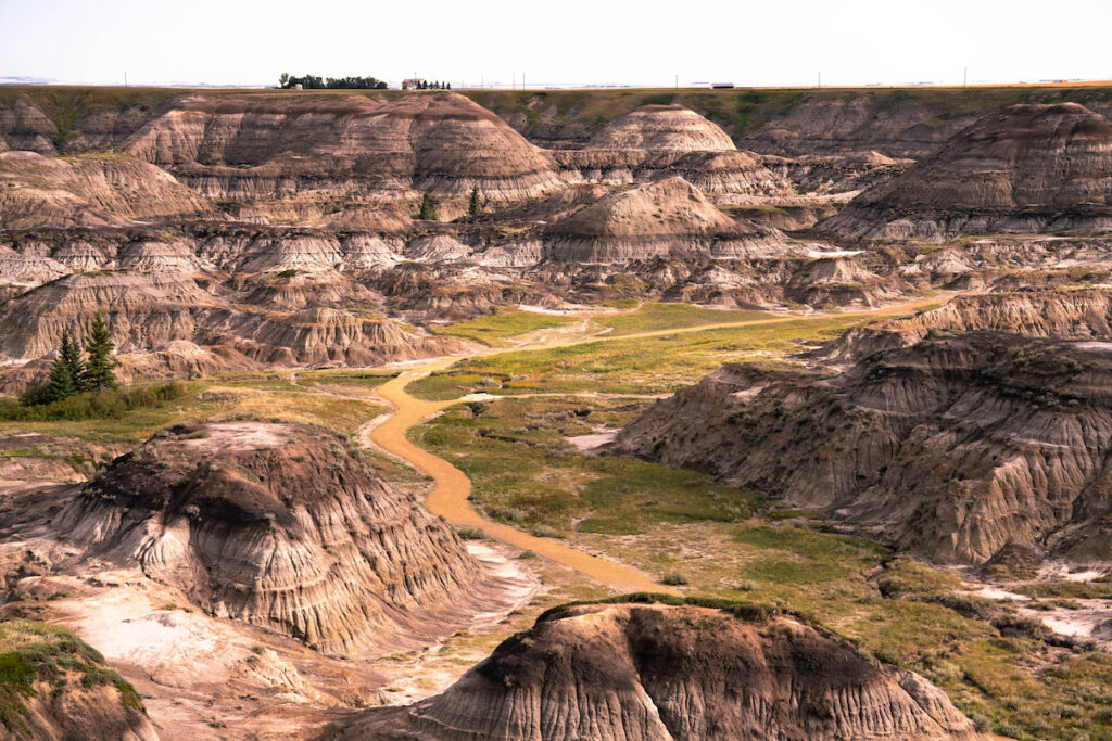 Grand vista of Horseshoe Canyon in Alberta badlands.