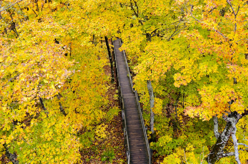 Aerial view of fall season in Northern Michigan.  Scenic State Park of Porcupine Mountains Wilderness State Park. Looking down from Summit Peak Tower
