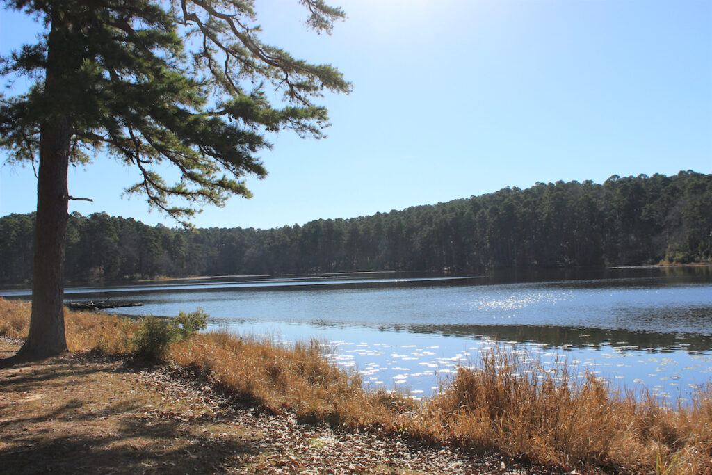 Tranquil scenery in Daingerfield State Park, Texas.