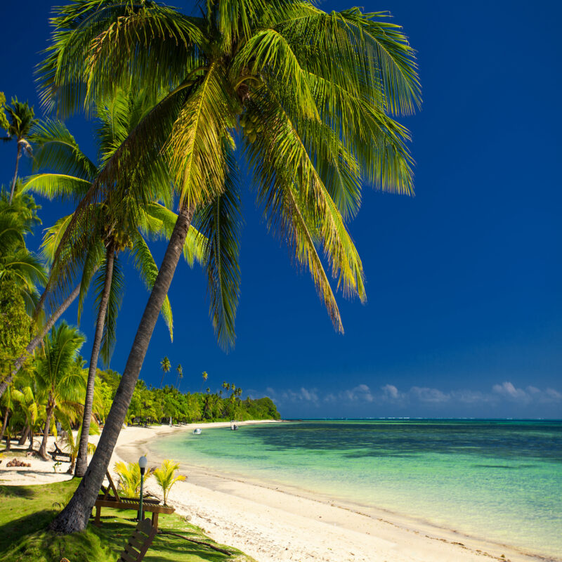 Palm trees and a white sandy beach at Fiji Islands