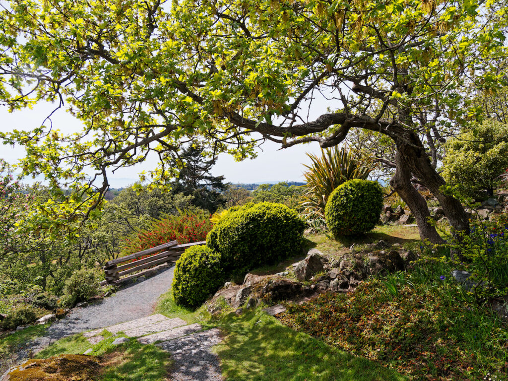 Spectacular landscape of public garden in Government House grounds in Victoria BC