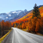 Fall foliage along the Million Dollar Highway near Silverton, CO