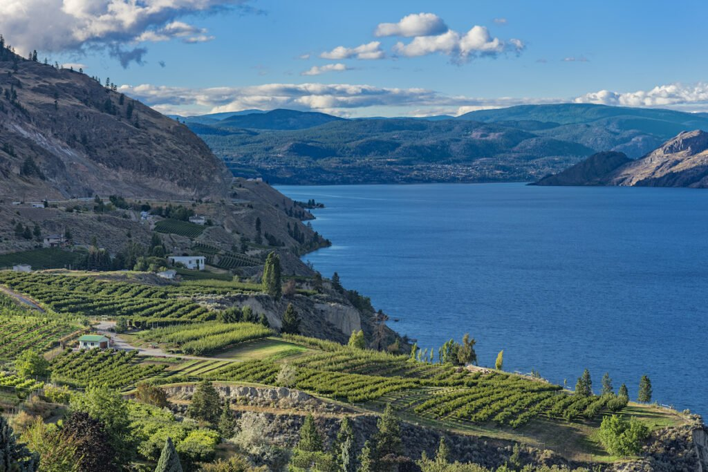 Okanagan Lake near Summerland British Columbia Canada with orchard and vineyard in the Foreground.