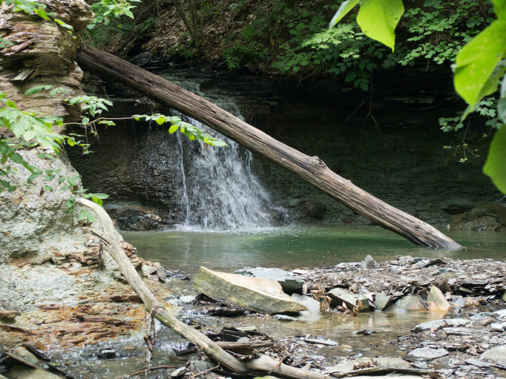 Small waterfall with a tree in front at Delaware County Park in Ohio.